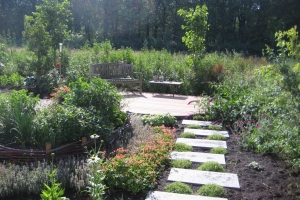 Natuurlijke tuin met veel groen en ronde vormen