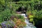 Volgroeide tuin vol met weelderige planten