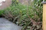 Volle border in tuin in Zeist