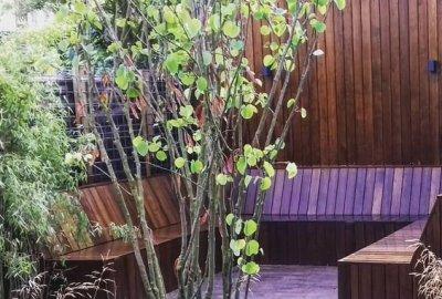 Luxe lounge geïntegreerd met de schuur in stadstuin Utrecht