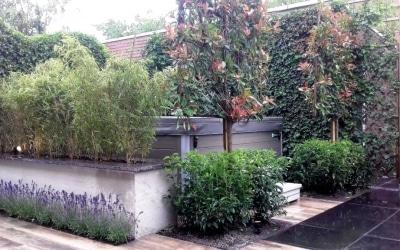 Ontwerp en aanleg van een tuin om in te genieten